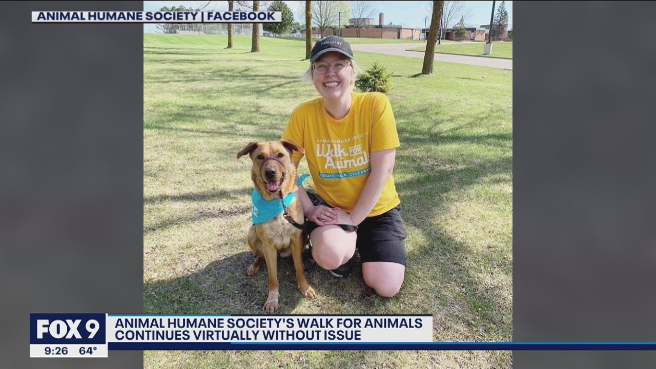 Virtual Walk Raises Thousands For Animal Humane Society