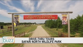 Headed on safari: popular Minnesota attraction to welcome guests with new drive-through
