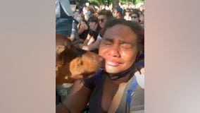 Dog comforts grieving protests at demonstration outside Minnesota Governor's mansion over George Floyd's death