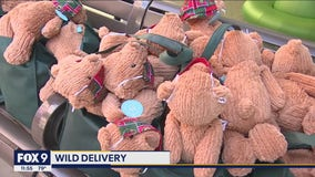 Wild deliver 100 teddy bears to young fans at Children's Hospital to celebrate team's return to ice
