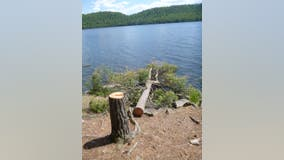Superior National Forest issues food storage restrictions for BWCA to reduce conflicts between humans, bears