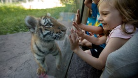 Minnesota Zoo reopening to public on July 24