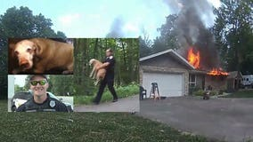 'A Lion King moment:' Bodycam captured Caledonia officer rescuing dog from house engulfed in flames