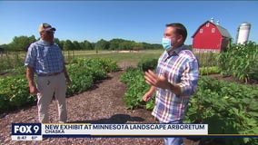 Learn how to vegetable garden like a pro at brand new Arboretum exhibit