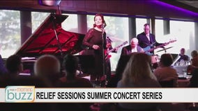 "Filling the State Fair music void: ""Relief Sessions Series"" headed to Burnsville"