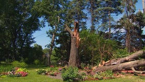 Little Canada couple has makeshift backyard wedding setup destroyed by storms