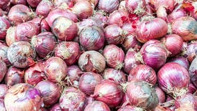 14 Minnesota cases linked to recalled onions in Salmonella outbreak