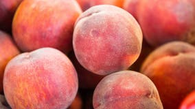 23 Minnesota cases linked to peaches with possible Salmonella contamination