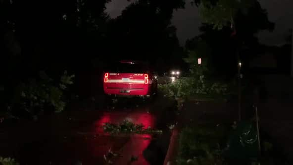 Downed branches in north Minneapolis following severe weather