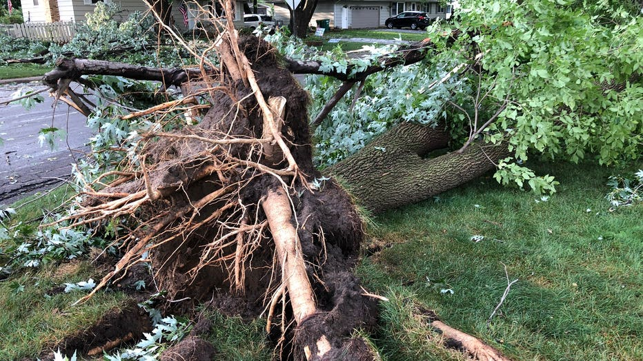 Bloomington storm damage