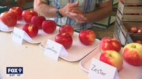 Finding the perfect apple - U of M apple expert on his early season favorites