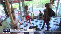 Minneapolis cat café looking for cat cuddlers