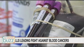 Light the Night: FOX 9 Buzz partners with LLS to raise money to cure blood cancers