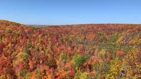 Five fall color drives to take in Minnesota this fall
