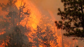 Minnesota Governor authorizes sending 29 Minnesota firefighters, 9 trucks to Oregon wildfires