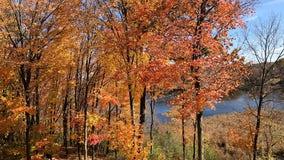 DNR: Most of Minnesota passes peak fall colors