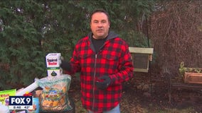 Outsmart the critters this winter - Ideas to protect your favorite plants & landscaping