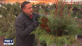 Adding pops of color to your outdoor winter garden