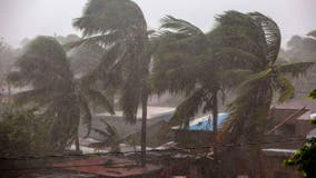 Hurricane Eta makes landfall in Nicaragua as violent Category 4 storm