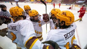Gopher hockey stays at No. 1 after first loss, split at Wisconsin