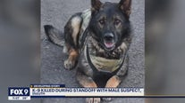 Duluth Police K-9 shot, killed during standoff