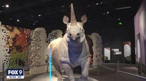 Science Museum of Minnesota reopens doors after pandemic pause
