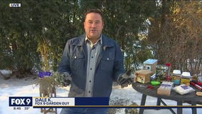 Searching for signs of spring with Garden Guy Dale K