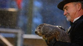 Groundhog Day 2021: Punxsutawney Phil predicts 6 more weeks of winter