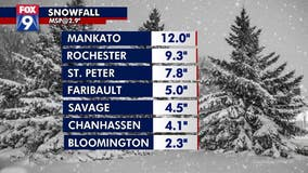 Snow totals: Mankato gets foot of snow during spring snow storm