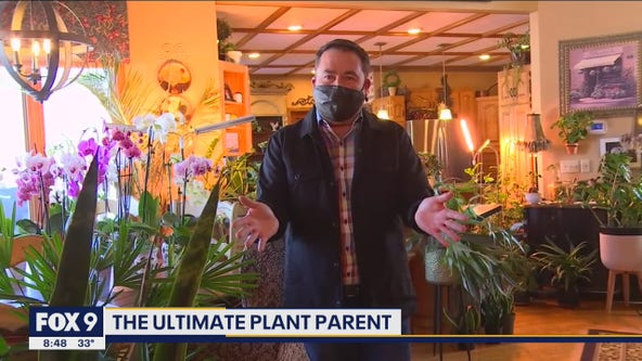 Meet the ultimate plant parent with Garden Guy Dale K