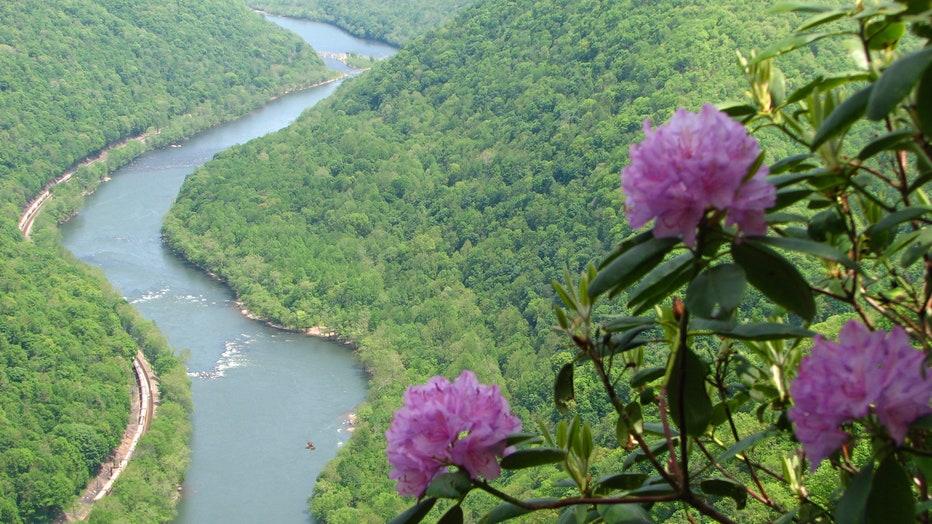 New-River-Gorge2.jpg
