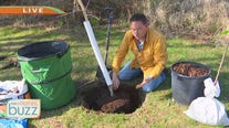 Plant a tree for Earth Day with Garden Guy Dale K (who loves to say 'compost')