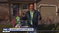 Garden Guy Dale K's tips to a lush & green lawn