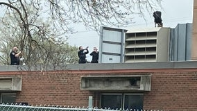 Firefighters help get suspect down after man climbs on roof to evade Bloomington police