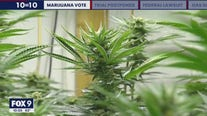 Minnesota House to vote on marijuana bill