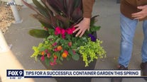 Planting a successful container garden with Dale K