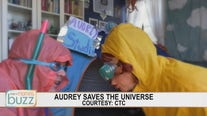 "Original CTC mini series ""Audrey Saves the Universe"" to provide laughs for all ages"