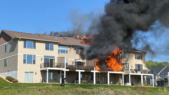 Good Samaritans rescue family's dogs from Prior Lake townhome fire
