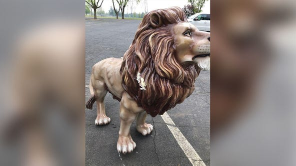 Lion statue at Shakopee splash pad vandalized, reward offered