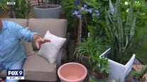 Best patio plants to dress up your space