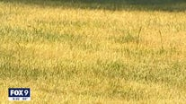 Saving your lawn during a drought