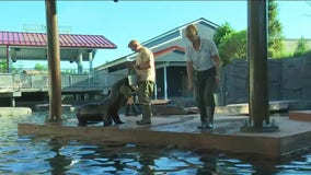 Como Zoo unveils Como Harbor