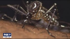 Heat wave could cause more cases of West Nile virus this year