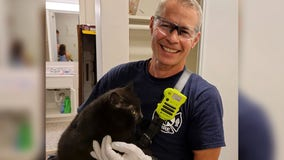 Richfield firefighters rescue cat trapped under dishwasher