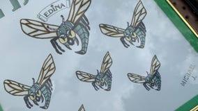 Battle buzzing over 40-year-old Hornet logo in Edina