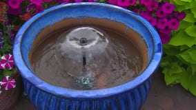 Bringing a splash to your backyard patio