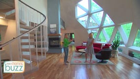 For Sale: Spacious geodesic home with indoor slide