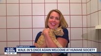 Walk-ins are once again welcome at the Animal Humane Society