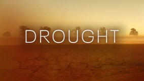 Minnesota drought: Your questions answered