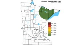 DNR launches Fall Color Finder for 2021